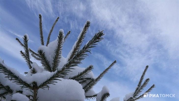 Сорокаградусные морозы придут в Томскую область в четверг
