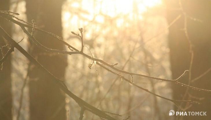 Синоптики прогнозируют резкое похолодание с четверга в Томске