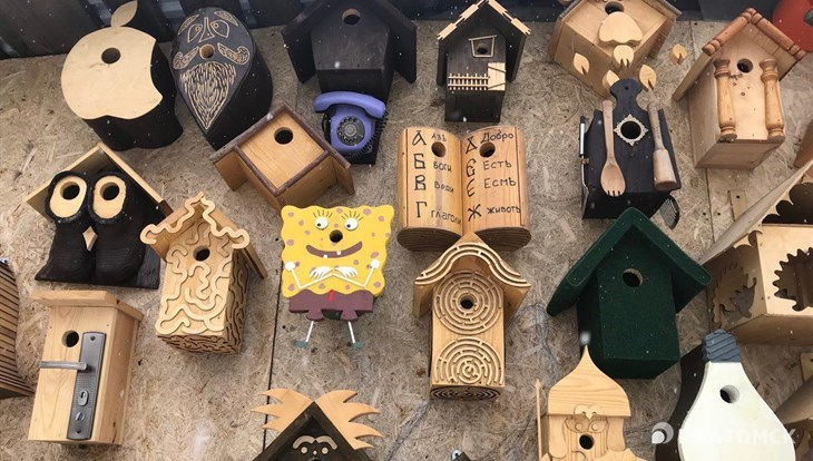 Жилища для уток и сов: как томич сделал свой дом местом для селфи