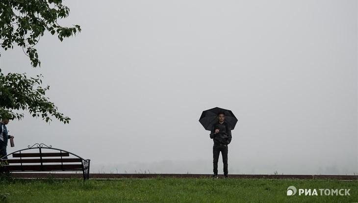 Дождь, гроза и ветер до 20 м/с возможны в Томске в пятницу
