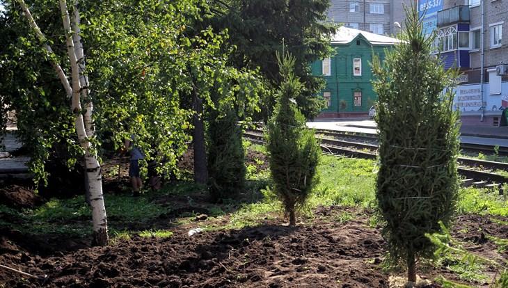 Мэр Томска потребовал ускорить высадку крупных саженцев деревьев на Кирова